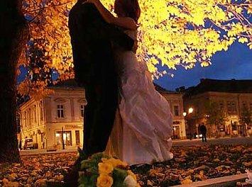 Danca Digital Nunta Baia Mare