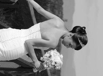 Alessia Design Nunta Baia Mare